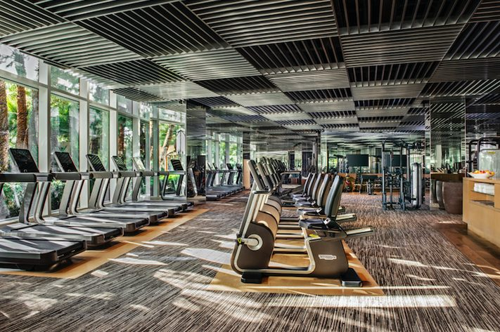 A Comprehensive Guide on How to Start a Hotel Gym 2