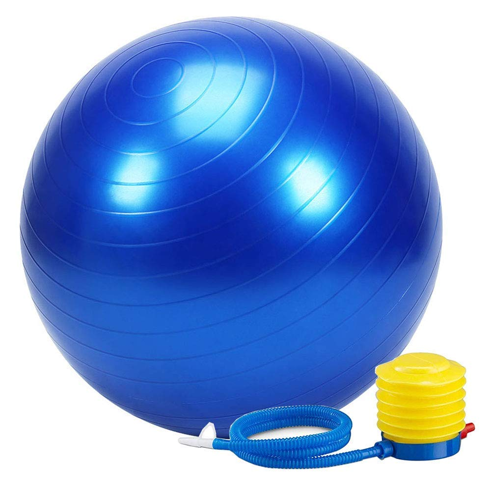 Best Gym Owner's Fitness Ball Buying Guide in 2021 1