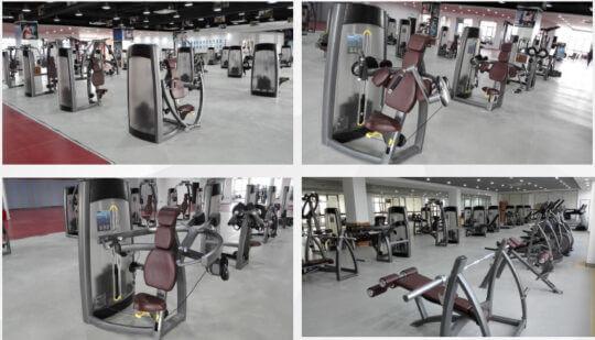 Strength Equipment 14