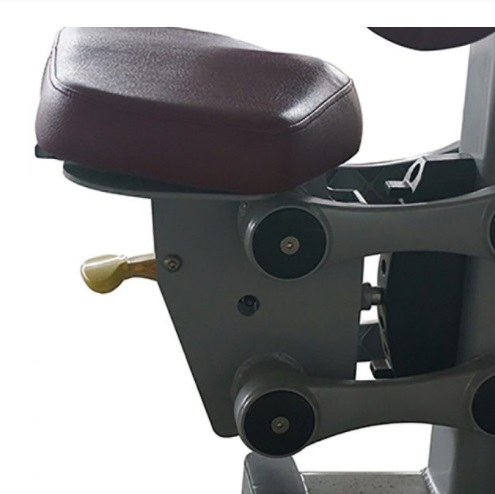 Butterfly Exercise Machine 20