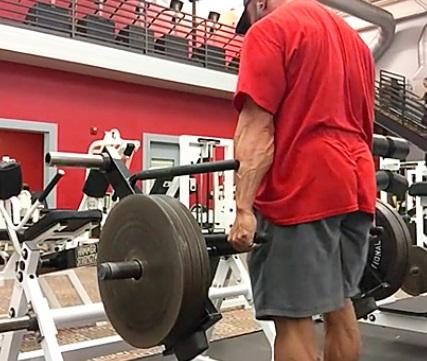 Hammer Strength Shrug 6