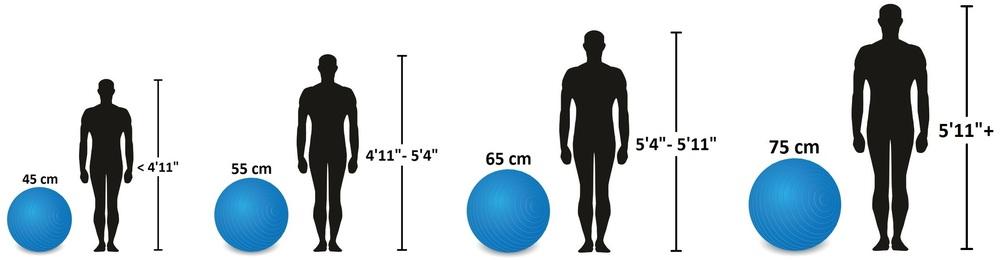 Wholesale Stability Balls 14