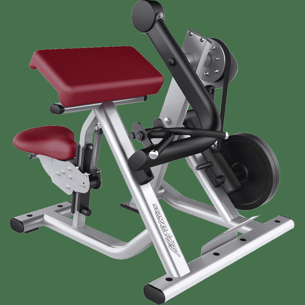Machine à biceps à chargement de plaque - Guide de FAQ définitif 9
