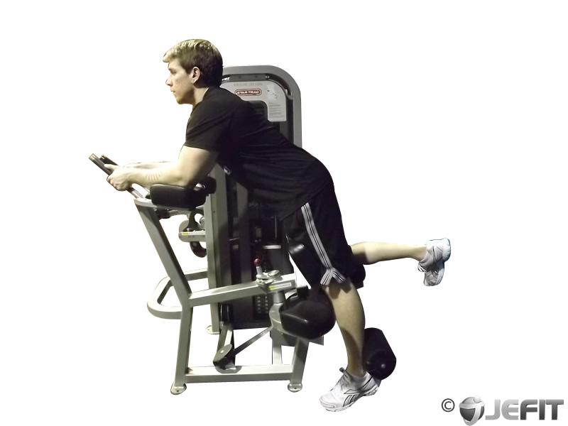 Hammer Strength Prone Leg Curl 16