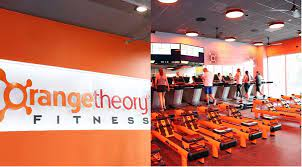 Best Franchise Gyms If You Want to Start Small 16
