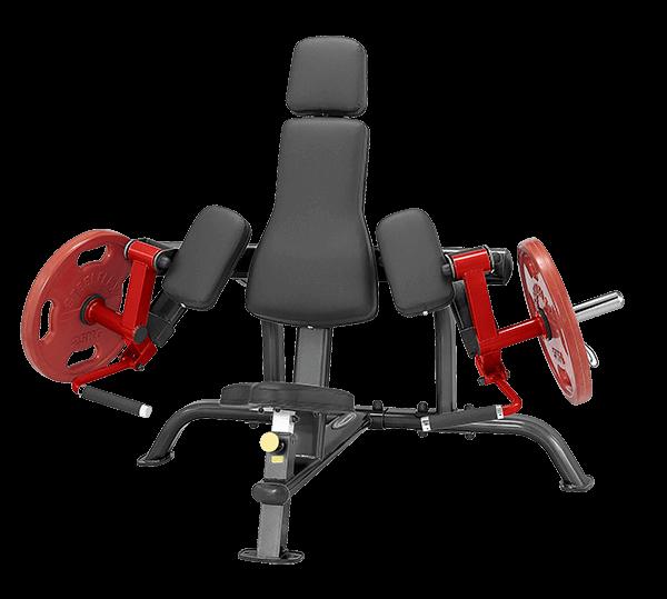 Machine à biceps à chargement de plaque - Guide de FAQ définitif 10
