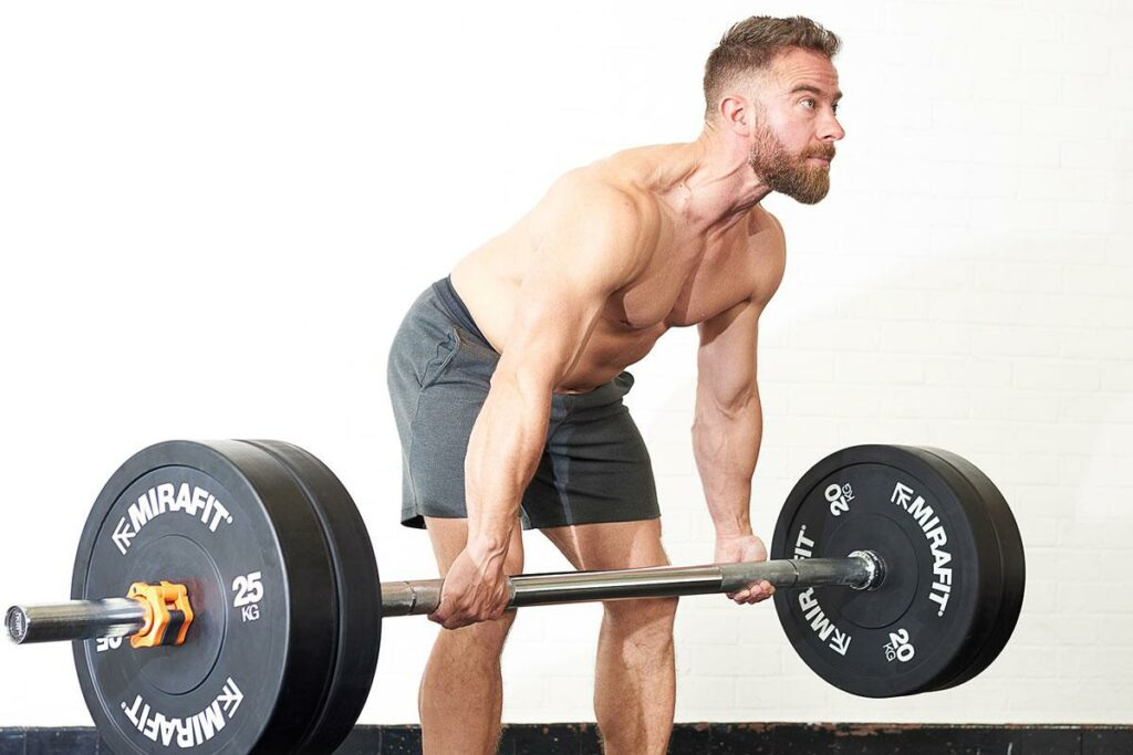 Commercial Weight Lifting Equipment 19
