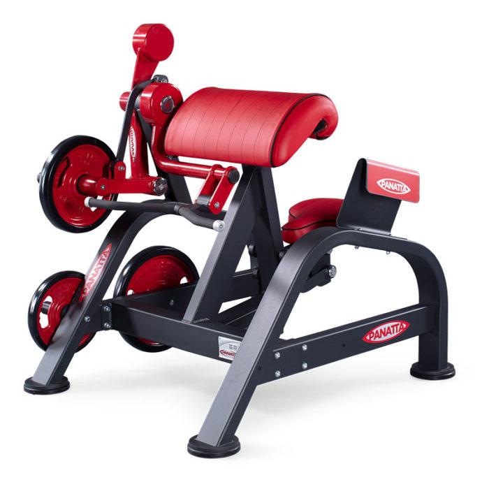 Machine à biceps à chargement de plaque - Guide de FAQ définitif 14