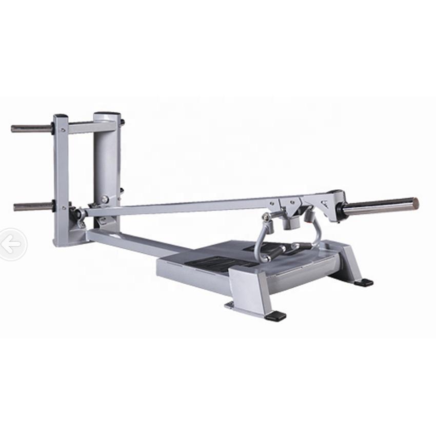 Hammer Strength T Bar Row 11