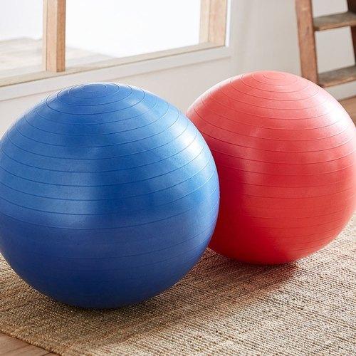 Exercise Balls Wholesale 13