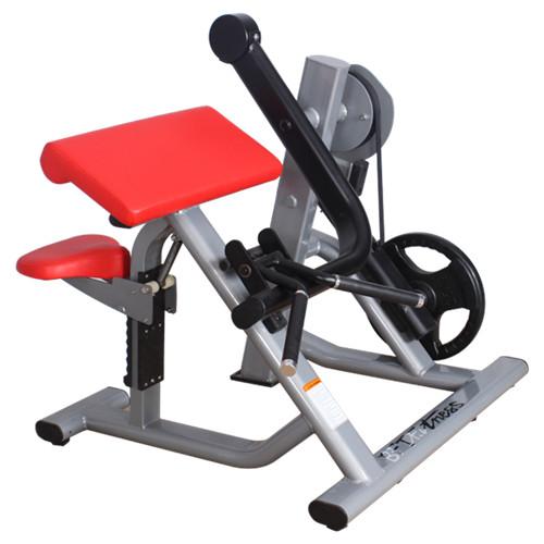 Machine à biceps à chargement de plaque - Guide de FAQ définitif 17