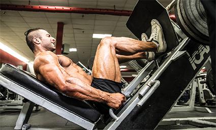 Leg Press Bench 9