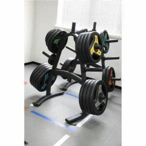 Standard Weight Tree Barbell Disc 3