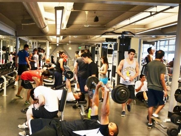 What it Takes to Create a Functional Yet Stunning Gym Layout 5
