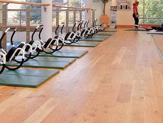 Ultimate Guide to Commercial Gym Floor Plan 8