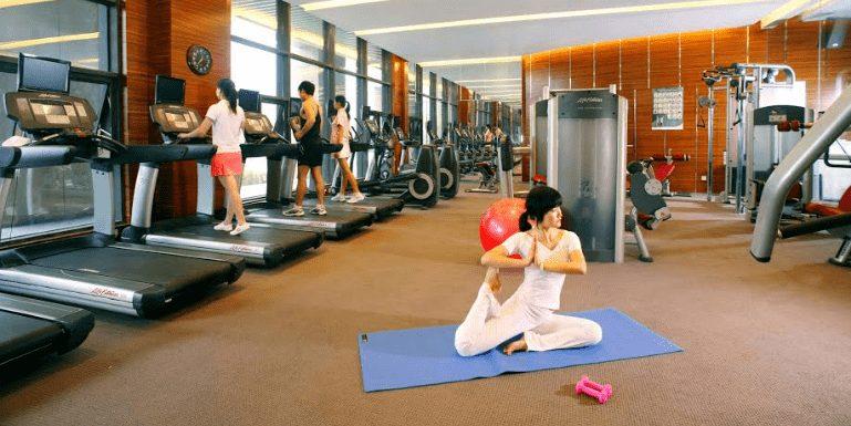 Custom Gym Equipment Manufacturers 4