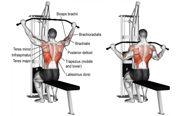 Commercial Lat Pulldown Machine 15